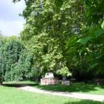 Сады Св.Георгия в Лондоне