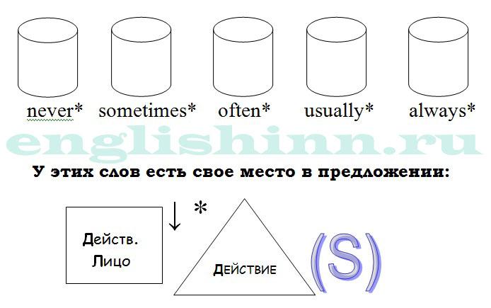 Наречия частоты действия в Present Simple Tense