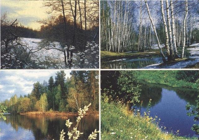 seasons упражнения картинки для описания