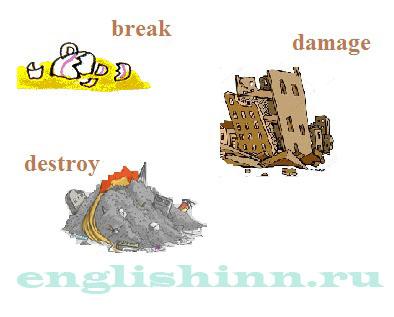 Ecology. Упражнения