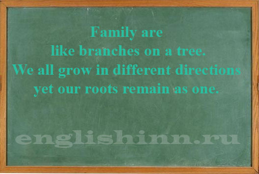 Family are like branches on a tree.